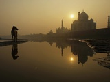 Stray Dog on a Sand Bank of the Yamuna River as the Sun is Seen Rising over the Taj Mahal in India Photographie