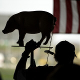 Man Holds a Pig, Representing Goverment Spending, as He Attends a Tea Party Tax Rally Photographic Print