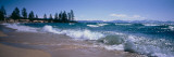 Trees Along a Lake, Lake Tahoe, Nevada, USA Photographic Print by Panoramic Images 