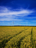 Windfarm Beyond Wheat Field, Bridgetown, County Wexford, Ireland Photographic Print
