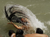 Naked Hindu Holy Man,Takes a Dip in the River Ganges During the Kumbh Mela Festival in India Photographic Print