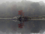 Fog Rises Off a Lake in Highlands, N.Y. Photographic Print
