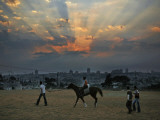 Arab Children Walk with Horse at Muslim Holiday of Eid Al-Fitr, Playground Overlooking Jerusalem Photographic Print