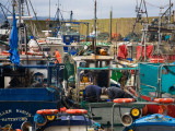 Helvick Fishing Harbour, Ring Gaeltacht County Waterford, Ireland Photographic Print