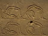Petroglyphs on a Wall, Luxor, Karnak, Egypt Photographic Print