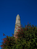 Round Tower and Fuschia, St Declan's 5th Century Monastic Site, Ardmore, County Waterford, Ireland Photographic Print