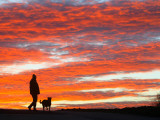 Man Walks His Dog under a Red Sky in the Afternoon Hours in Frankfurt, Central Germany Photographic Print