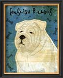 English Bulldog Posters by John Golden