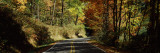 Road Passing Through a Forest, Cove Creek, North Carolina, USA Photographic Print by  Panoramic Images