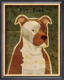 Pit Bull Poster by John Golden