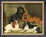 Toy Spaniels Art by Vero Shaw