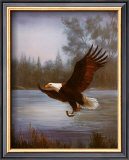 Eagle Fishing Print by M. Caroselli