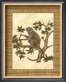 Monkey in a Tree II Print by Dianne Krumel
