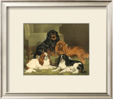 Toy Spaniels Prints by Vero Shaw