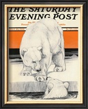 Polar Bears, c.1919 Framed Giclee Print by Charles Livingston Bull