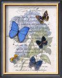 Hydrangea Butterflies I Print by Ginny Joyner