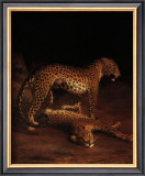 Two Leopards Playing in the Exeter Change Menagerie, c.1808 Poster by Jacques-Laurent Agasse