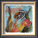 Tropical Fish I V Prints by Linn Done