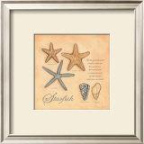 Starfish Posters by Stephanie Marrott