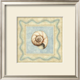 Shell Collector II Print by Meagher