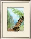 Seahorse Serenade IV Prints by Charles Swinford