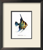 Fish Tail I Prints by Carolyn Shores-Wright