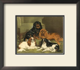 Toy Spaniels Posters by Vero Shaw