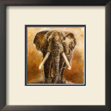 Elephant Prints by Olga Ilic