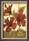 Sophisticated Hibiscus II Posters by Jennifer Goldberger