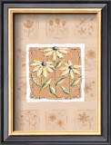 Black-Eyed Susans Prints by Wilma Sanchez