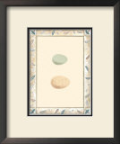 Antique Eggs II Print