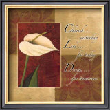 Calla Lily, Cherish Live Dream Prints by Maria Girardi