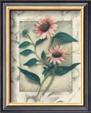 Echinacea Print by Julie Nightingale