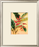 Heliconia Prints by Hale Pua Studio