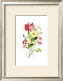 Flowers Print by Louise Anne Twarmley