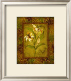 Garden Lilies I Posters by Allyn Engman