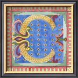 Ornamental C Prints by Pamela Shirley
