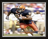 David Tyree Framed Photographic Print