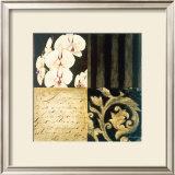 Orchid Sketch I Prints by Elizabeth Jardine