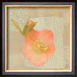 Hellebore II Posters by Philippe Paput