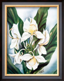 White Ginger Framed Giclee Print by Ted Mundorff
