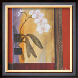 Orchid Lines I Prints by Don Li-Leger