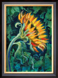 Sunflower Framed Giclee Print by Marcella Rose