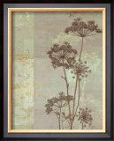 Silver Foliage I Posters by Ella K.