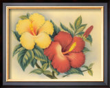 Hawaiian Hibiscus Art by Eve Hawaii