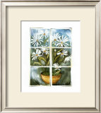 Daisies at the Window Prints by Sonia P.