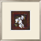 Orchid Study I Prints by Thomas Wood