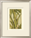 Graphic Palms IV Prints by Jennifer Goldberger
