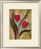 Tulip Framed Giclee Print by Marcella Rose