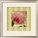 Rose and Romance II Prints by Pela Design